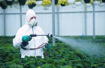 Препараты для защиты растений от болезней