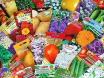 Семена овощных и цветочных культур